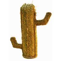 Cactus de esparto tm.1