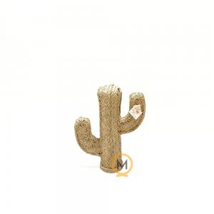 cactus de esparto pequeño