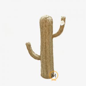 Cactus de esparto mediano